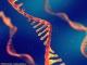 循环外体胃癌相关长非编码RNA1作为早期检测和监测胃癌进展的生物标志物: 多阶段研究(图文)