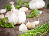 生活方式因素,维生素和大蒜补充与胃癌结果之间的关联