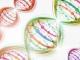 卡巴他赛治疗晚期胃食管癌的多中心II期研究:HER2表达和M2类肿瘤相关巨噬细胞与患者预后的关系