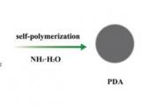 一种新型纳米颗粒制剂,以增强黄嘌呤的胃粘附性和生物利用度