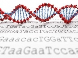 单细胞测序提示胃癌细胞的异质性